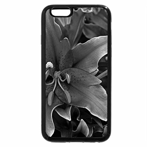 iPhone 6S Plus Case, iPhone 6 Plus Case (Black & White) - Incredibly beautiful lily