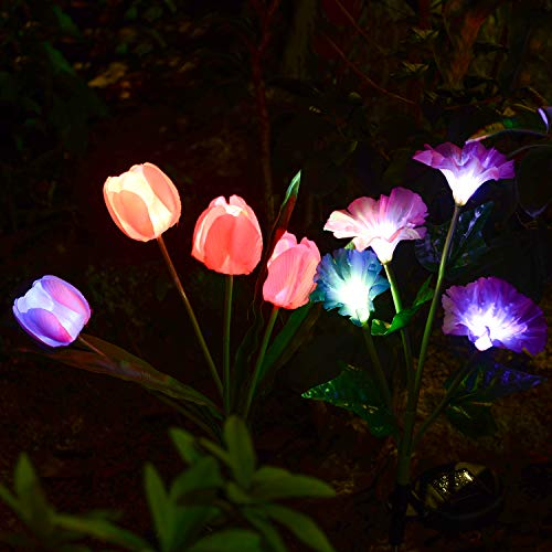 Solarmart Outdoor Solar Garden Lights - 2 Pack Solar Powered Lights, Multi-color Changing LED Solar Stake Lights for Garden, Patio, Backyard (Tulip and Morning glory Flower)