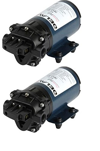 Totally Enclosed Non Ventilated Motor (Pack of 2 - Delavan 7800 Series Diaphragm Pump 7812-201 - 12V, 60 PSI, 2.0 GPM - Demand Pump)