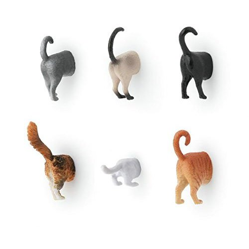 Kikkerland Cat Butt Magnets, Set of 6 (MG53) (Cat Magnets)