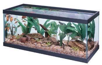 All Glass Aquarium AAG10033 Tank, 33l