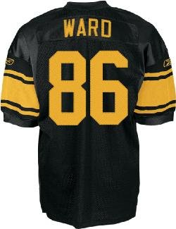 low priced 83bff baeae Amazon.com: Pittsburgh Steelers Authentic 1960 Hines Ward ...