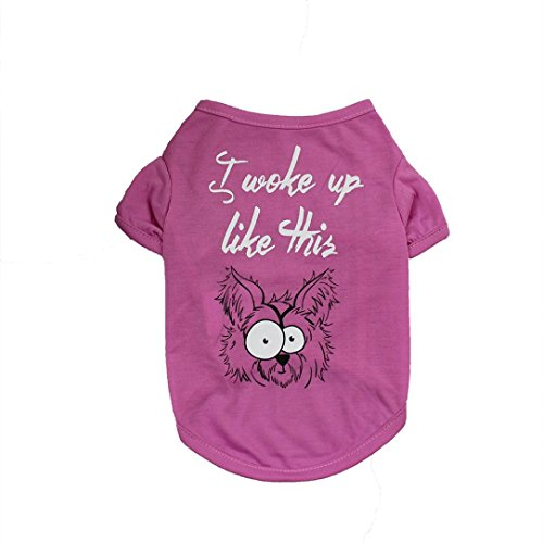 OOEOO Dog Clothing T Shirt Puppy Costume for Small Pet i Woke up Like This Apparel (Pink, ()