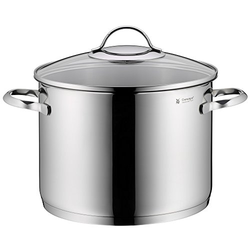 WMF 723249990 Vegetable Pot 24 cm Approx. 8.8 litres Glass Lid Dishwasher Safe Stainless Steel Multi-Coloured