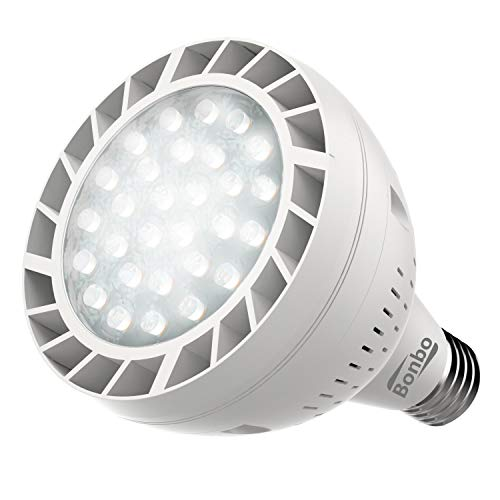 Jandy White Led Pool Light