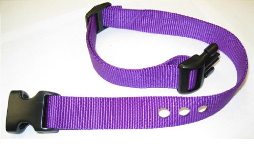 Grain Valley 1″ Replacement Strap, Color: Purple. Sold Per Each. Fits Most PetSafe Bark Collars and Many Containment Collars. (No-Bark Collars / Accessories) For Sale