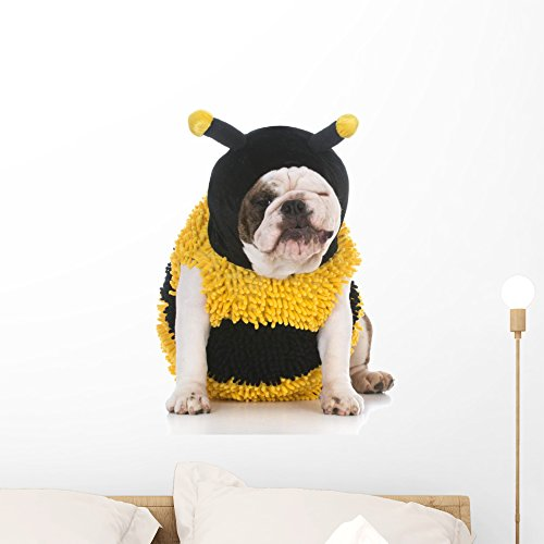 Wallmonkeys Dog Wear Bee Costume Peel and Stick Wall Decals WM359430 (24 in H x 20 in (Costumes For Bulldogs)