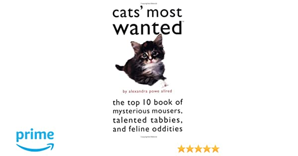 CatsMost Wanted™: The Top 10 Book of Mysterious Mousers, Talented Tabbies, and Feline Oddities