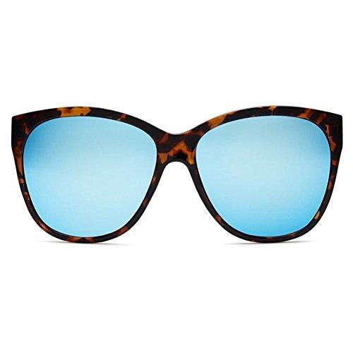 Quay About Last Night Sunglasses | UV Protection Lens - Black/Tortoise - Australia Uv Protection Sunglasses