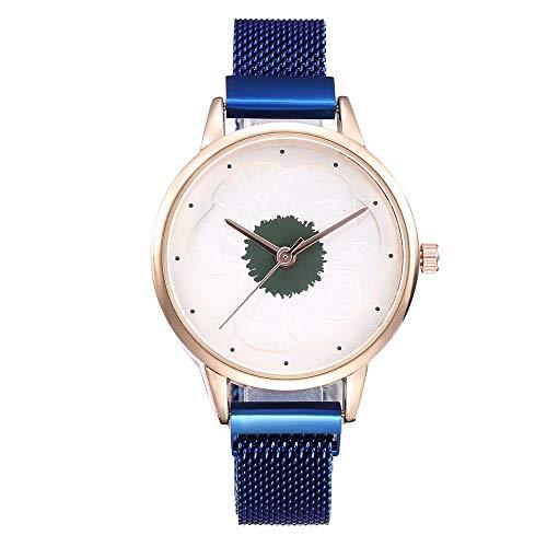 Kanpola Reloj análogo de la Correa de Newv de la Correa del Acero Inoxidable Newv del Cuarzo Ocasional de Las Mujeres: Amazon.es: Relojes