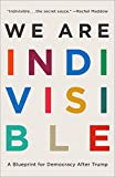 We Are Indivisible: A Blueprint for Democracy After Trump: more info