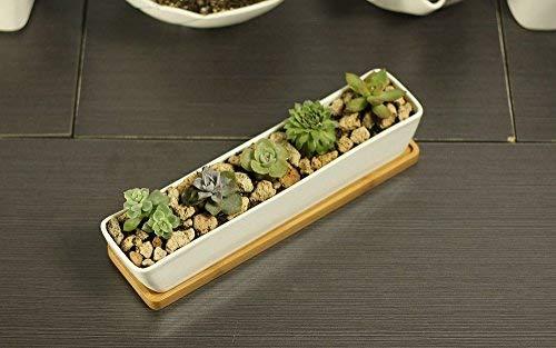 Pot de fleurs artificielles blanc en céramique– Pots rectangulaire conteneurs avec plateau en bambou pour planter Mini Succulente Cactus