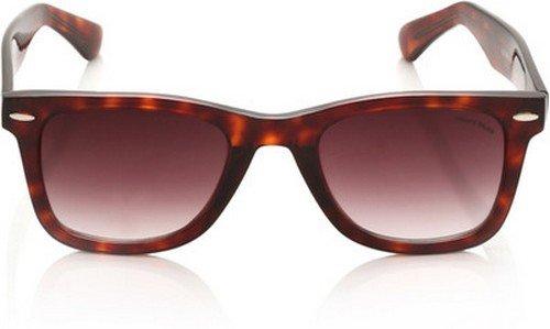b43571f760d Image Unavailable. Image not available for. Colour  Miami Blues Wayfarer  Sunglasses (Demi Brown) (MB 014B)