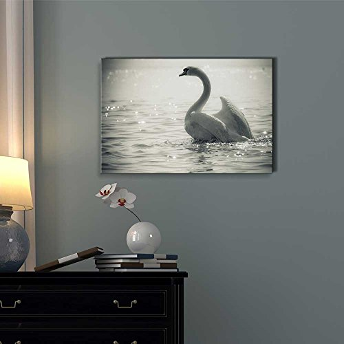 Graceful Swan on a Lake in Black and White Wall Decor ation