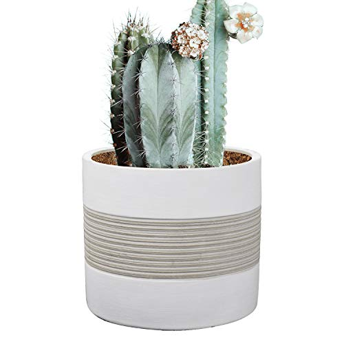 (Brief Succulent Pots, 5 inch Diameter, 1 Pack Modern Cement Cactus Flower Aloe Snake Plant Planter Container with Drainage Hole, White(P002))