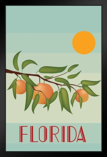 Retro Style Florida Oranges and Sunshine State Travel Framed Poster 14x20 ()