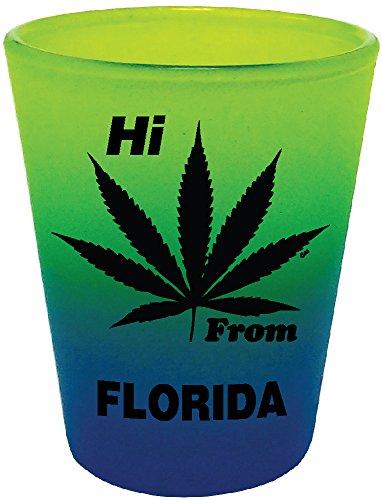 HI FROM FLORIDA - LEAF - SHOT GLASS COLLECTABLE SOUVENIR NOV