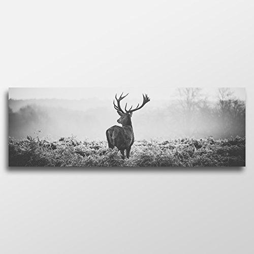 Wandbild XXL Hirsch Panorama SchwarzWeiß 150x50 Panorama Tier Leinwand