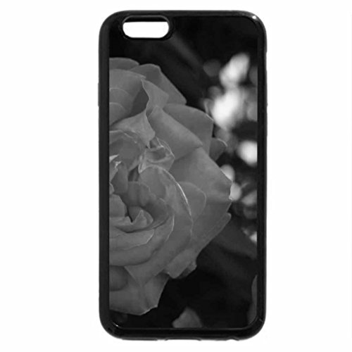 iPhone 6S Plus Case, iPhone 6 Plus Case (Black & White) - Roses are sure beautiful