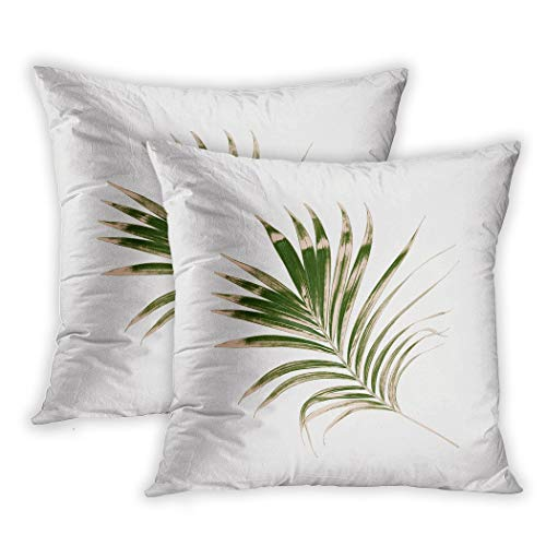 Lichtion Set of 2 Throw Pillow Covers Print Green Leaves of Palm Tree Isolated On White Background Decorative Soft Bedroom Sofa Pillowcase Cushion Couch 16 x 16 Inch