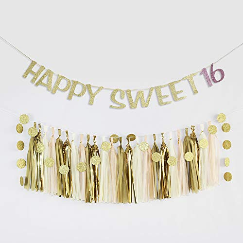 (Happy Sweet 16 Birthday Banner with 24 Tissue Garlands and 25pcs Circle Dot Garlands Dirty 16 Years Banner 16th Fabulous Party)