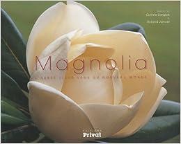 Magnolia L Arbre Fleur Venu Du Nouveau Monde Corinne Langlois
