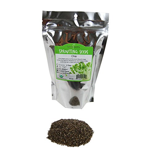 Organic Chia Seeds - 1 Lbs - Black Chia Sprouting Seeds For Growing Sprouts, Microgreens Chia Pet Refills, Food Storage, Sprout Salad (Best Places To Live With Celiac Disease)