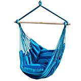 Toucan Outdoor Hammock Chair with Pillow Set