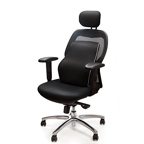Buy lumbar pillow for office chair
