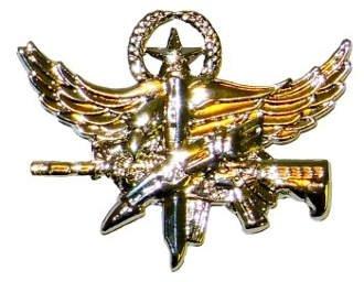 (SWAT Operator Insignia Pin - Center Mass - Master - Polished Gold)