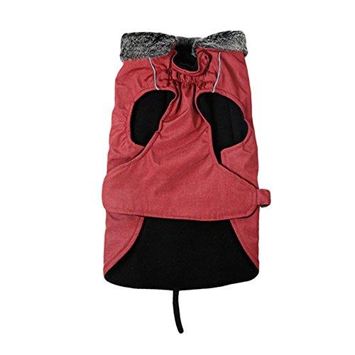 Caldo E Per Cappotto Rosso Impermeabile Grande Giubbotto Regolabile qWr1AnUxq