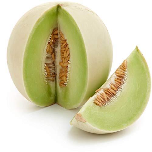 Honey Dew Melon Seeds, 30+ Premium Heirloom Seeds, On Sale, (Isla's Garden Seeds), Non Gmo Organic, 90% Germination Rates, Highest Quality Seeds.