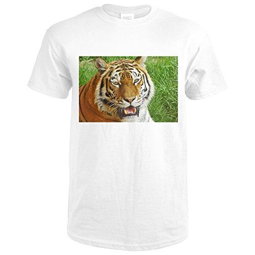 Bengal Tiger Up Close (Premium White T-Shirt Small) Bengal Tiger Close Up