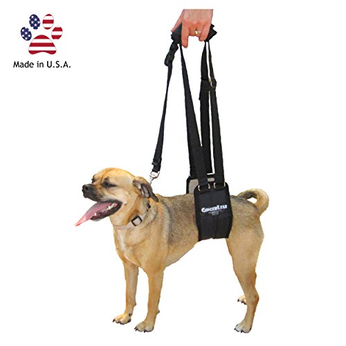 GingerLead Dog Support & Rehabilitation Harness - Small Female Sling - Ideal for aging, disabled, or injured dogs needing assistance with their balance and mobility