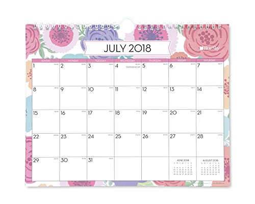 Blue Sky 2018-2019 Academic Year Monthly Wall Calendar, Twin Wire Binding, 11