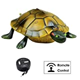 OffKits Kids Toy Remote Control Tortoise Simulation Toy Slow Turtle Action Figures Eyes Lighted Animated Animal RC Toys Halloween Christmas Party Gifts for Kids (Brown)