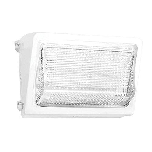 - RAB LED Wallpack - 24 Watts, 5000K, 120-277 Volts (White)