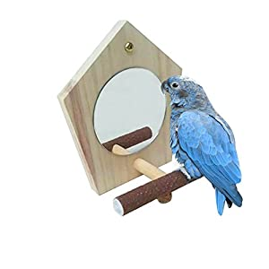 Parrot Cage Mirror with Perch for Parrot Macaw African Greys Budgies Cockatoo Parakeet Cockatiels Conure Macaw Lovebird and Cage Accessories 70