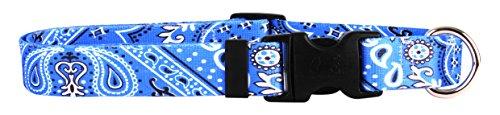 Yellow Dog Design Bandana Blue Dog Collar 3/4