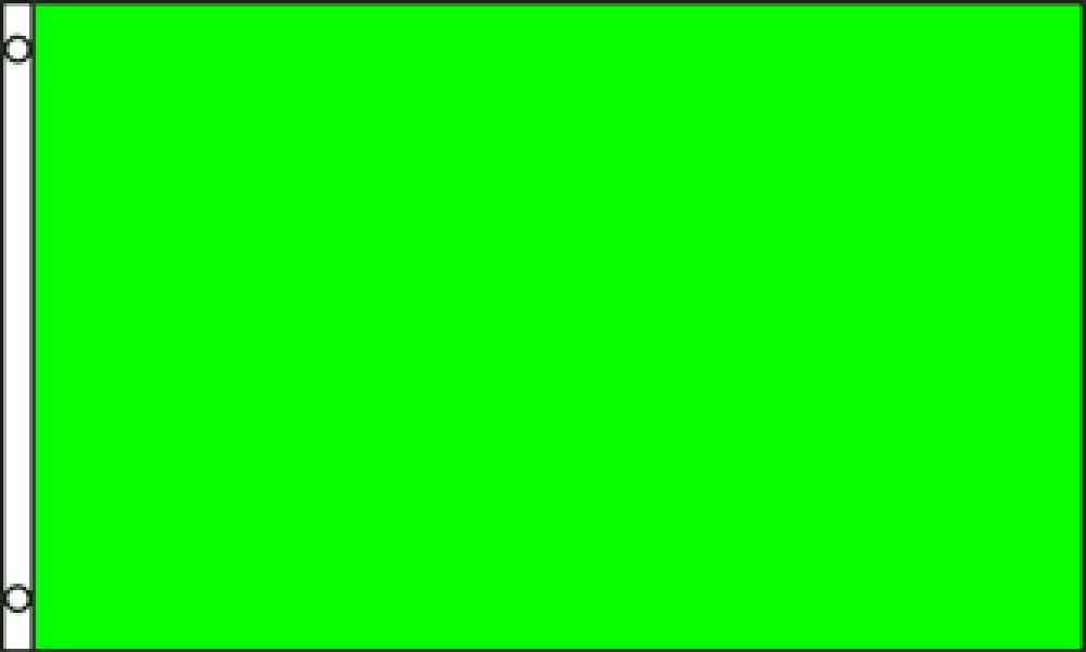 Amazoncom Neon Green Solid Color 3x5 Ft Polyester Flag Garden