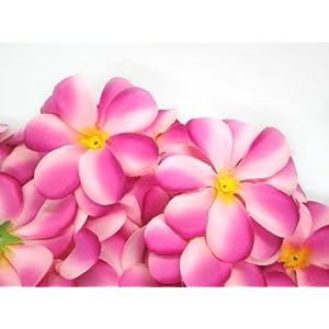 "(100) Two-Tone Pink Hawaiian Plumeria Frangipani Silk Flower Heads - 3"" - Artificial Flowers Head Fabric Floral Supplies Wholesale Lot for Wedding Flowers Accessories Make Bridal Hair Clips Headbands Dress 2"