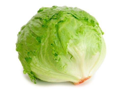 Image result for lettuce