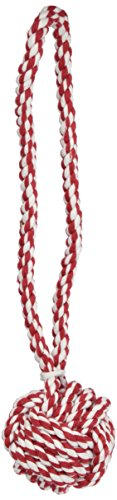 Zanies Monkeys Fist Knot Rope