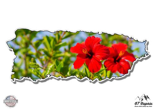 GT Graphics Puerto Rico Shape Beautiful Hibiscus Vacation Paradise - 5