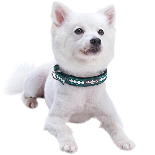 Image of Blueberry Pet 7 Colors Soft & Comfy 3M Reflective Jacquard Padded Dog Collar with Metal Buckle in Teal Blue, Neck 9-12.5