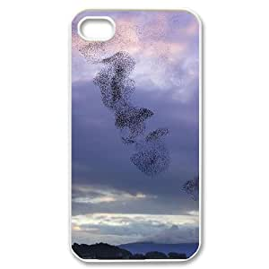 Birds Migration Popular Case for Iphone 4,4S, Hot Sale Birds Migration Case