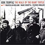 Walk of the Giant Turtle