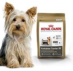 What Kind Of Dog Food Does Yorkies Eat