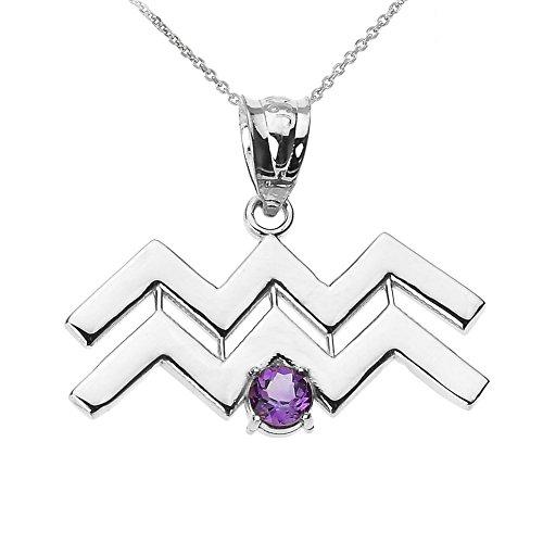 Astrology Jewelry Personalized 14k White Gold Genuine Amethyst February Birthstone Aquarius Zodiac Pendant Necklace, 16