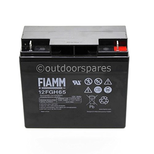Genuine Mountfield 12v 200a 18ah Electric Start Lawnmower Battery Fiamm